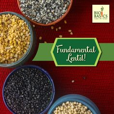 Ever wondered why Lentils/Dals are such a staple in the Indian diet? Dals are the world's oldest cultivated legumes. These humble seeds boast plenty of health benefits! Dals are the highest sources of vegetarian protein. Additionally, they are also high in essential vitamins and minerals but low in fat! Dals truly are a superfood, but what makes them even more alluring is that they are one of the most economical and sustainable crops. Indian Diet, Vegetarian Protein, Vitamins And Minerals, Superfood, Lentils, Health Benefits, Seeds, Fat, Grains