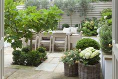 White hydrangeas...Full details on Modern Country Style blog: Leopoldina Haynes' Small Garden