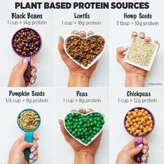 Some plant based mostly protein sources 🌱 . As a result of there are a selection of various methods to get protein in your weight loss plan ❤️ Listed here are some extra concepts 😄 Whereas I usuall… Best Protein, High Protein Recipes, Protein Foods, Vegan Foods, Healthy Recipes, Non Meat Protein Sources, Healthy Food, What Has Protein, Eating Healthy