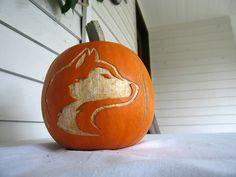 Husky Pumpkin! @Washington Huskies @University of Washington #washington #huskies #halloween