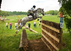 Eventing>Hunters all day Cute Horses, Horse Love, Beautiful Horses, Clydesdale, Appaloosa, Cross Country Jumps, English Riding, To Infinity And Beyond, Show Jumping