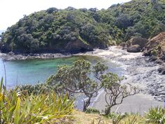 Walk to Tutukaka Lighthouse, worth the time, check the tides first