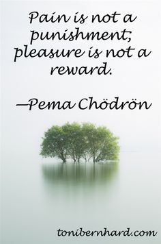"""Pain is not punishment, pleasure is not reward."" —Pema Chodron They are natural feelings states that we can observe and embrace. 