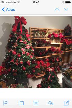 Colección navideña Martha Sophia 2015 dentro del #palaciodelospalacios , ven a conocerla!