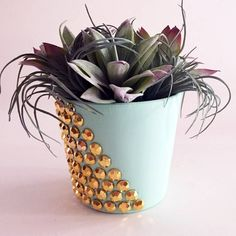 Gold Studded Clay Pot using Mod Podge