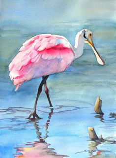 Solitary Spoonbill - watercolor by ©Sue Lynn Cotton  http://suelynncotton.com