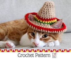 Cat Sombrero Crochet Pattern, Crochet Instructions for Pet Size Sombrero Hat with Ear Holes, Cinco De Mayo Crochet Pattern for Pets Gato Crochet, Crochet Pet, Gatos Cat, Miniature Dogs, Owning A Cat, Pet Fashion, Cat Accessories, Pet Costumes, Crochet Instructions