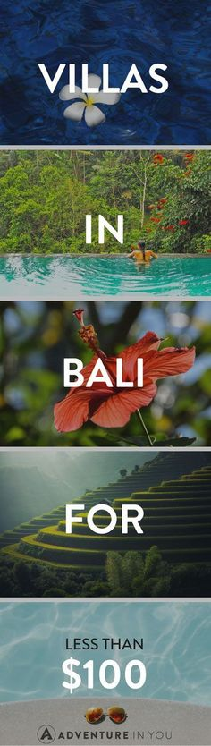 Bali Villas   Looking for kickass villas to stay in while in Bali without breaking the bank? Check out our list of the best villas in Bali for under $100!