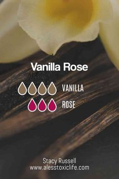 This blend smells so good. Vanilla essential oil and Rose essential oil make a great combination in the diffuser. Vanilla Essential Oil, Essential Oil Scents, Rose Essential Oil, Essential Oil Perfume, Essential Oil Diffuser Blends, Best Smelling Essential Oils, Perfume Oils, Essential Oil Combinations, Perfume Recipes
