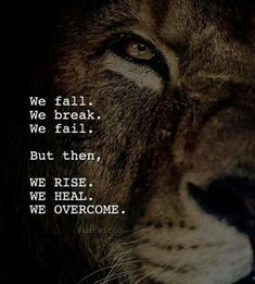 Here in this article we have shared 60 best motivational quotes, inspirational quotes, success quotes and positive life quotes. Wolf Quotes, Wisdom Quotes, True Quotes, Great Quotes, Motivational Quotes, Inspirational Quotes, Loner Quotes, Citation Lion, Image Citation
