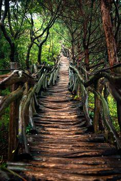 The hard path... by Hanson Mao(毛延延)