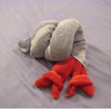 Make a Towel Origami Hermit Crab