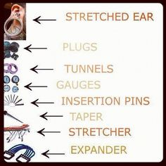 "Thank you. This is exactly right. The term ""gauges"" is completely wrong because it's stretched lobes. Tunnel is an incorrect term as well. If it's hollow, it's called an EYELET. Also, never wear tapers as jewelry. It's a tool used to stretch your lobe to a bigger size. Spirals are acceptable to wear because the weight is even."