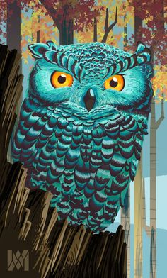 'Turquoise Owl' by Marvin Barreiros