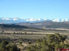 Looking for your own acreage with a panoramic view of the most beautiful mountains in Colorado?  Enjoy 360 views of the San Juans, Uncompahgre Plateau, and Grand Mesa from your dream cabin.   Plenty of deer, elk,  and other wildlife to enjoy on this secluded property as this parcel borders public land.  Water tap ,electricity, and phone are to the building site so you can still enjoy all the comforts of home.   Come...relax...enjoy!
