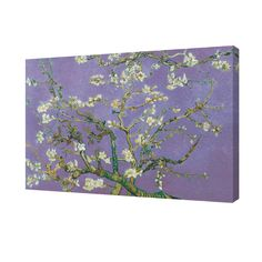 "24 in. x 36 in. ""Almond Blossoms - Lavender"" Printed Canvas Wall Art"