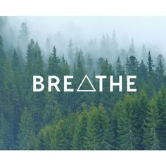 Breathe Triangle Decal Quote Decal Nature Decals Laptop Decals Car... ($3.58) ❤ liked on Polyvore featuring accessories and tech accessories