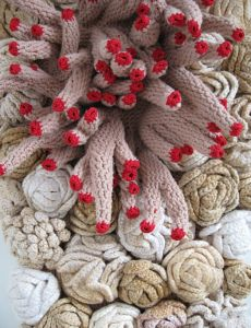 Screen shot 2011 05 15 at 11.11.03 AM 230x300 Freeform Crochet Artist Emily Barletta