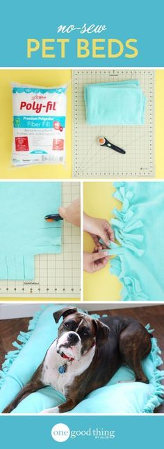 Sew Blankets No need to spend your hard-earned money on expensive pet beds. This cute and… - No need to spend your hard-earned money on expensive pet beds. This cute and comfy DIY bed is inexpensive AND doesn't require any sewing! Diy Dog Bed, Diy Bed, Pet Beds Diy, Cat Beds, Diy Pour Chien, Ideias Diy, Dog Crafts, Animal Projects, Diy Stuffed Animals