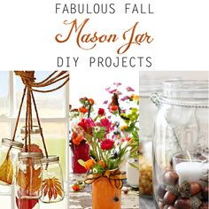 Fall Mason Jar Cliaprt | Fabulous Fall Mason Jar DIY Projects