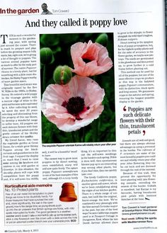 Tom Coward's Monthly Country Life Column - March 2015