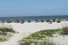 Hilton Head, SC...Been several times. Love it!! Favorite trip of all was many years ago. I still see my precious grandbaby girl on the beach with her little pink zinc oxide nose. She is in college now. Where did the time go?