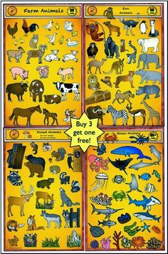 Animal Clip Art - Just posted New Value Bundle by Charlotte's Clips. Save 25% !!!! Get more than 215 images for only $9.  This set includes farm animals, zoo animals, forest animal, and ocean animals.
