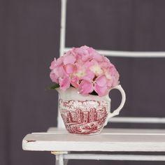 Hortensie im Vintage Milchkännchen von azurweiss.de