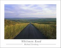 Whitman Road Poster Print