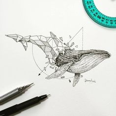 Geometric Beasts | Shark Process timelapse A video posted by Kerby Rosanes (@kerbyrosanes) on Feb 29, 2016 at 7:59pm PST Estupenda mezcla entre realismo y geometría de la pluma del ilustrador filip…