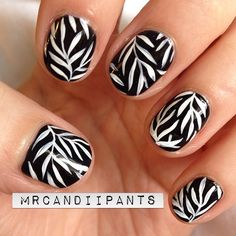 I loooove these nails. I don't do black and white designs enough, an I've tried this kind of fern-y design a couple times before...