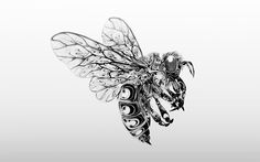 Si Scott Studio - Illustration / Graphic Design / Art