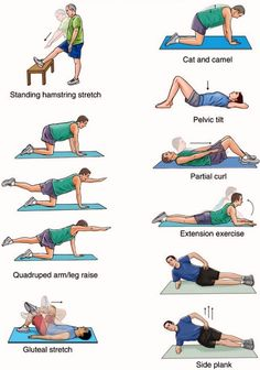 These exercise are good for your lower back.