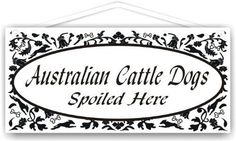 Australian Cattle Dogs Spoiled Here
