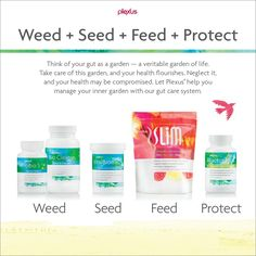 Think of your gut as a garden—a veritable garden of life. Take care of this garden, and your health flourishes. Neglect it, and your health may be compromised. Let Plexus® help you manage your inner garden with our gut care system.