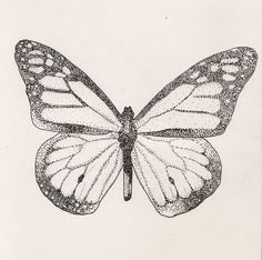 Simple_uncolored_dotwork_butterfly_tattoo_design.jpg 736×731 pixels