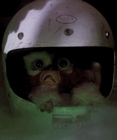 This doesn't look good. Gremlins (1984)