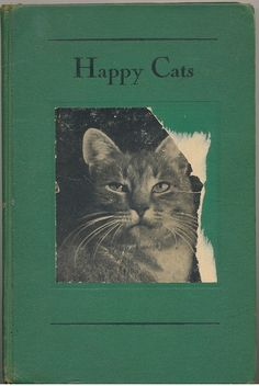 Happy Cats via janwillemsen on fickr
