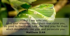 62 Bible Verses about Prayer - KJV - DailyVerses.net Psalm 143, Psalms, Bible Verses About Prayer, Biblia Online, Love Your Wife, He First Loved Us, Love Your Enemies, Brotherly Love, Daily Bible