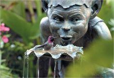 Cottingley Fairies by David Goode.