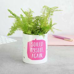 Soiled Myself Again Cactus Plant Pot#cactus #plant #pot #soiled Indoor Cactus Plants, Cactus Plant Pots, Ceramic Plant Pots, Indoor Plant Pots, Exotic Plants, Potted Plants, Planter Pots, Cactus Care, Cactus Flower