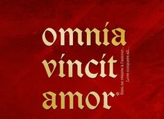 "The Roman poet Virgil wrote the first use of this phrase in Eclogues: Omnia vincit amor et nos cedamus amor, or ""Love conquers all things; let us too, yield to love."""