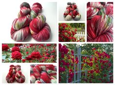 Rose Garden hand dyed yarn colorway by Witch Candy