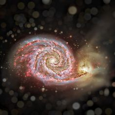 Hydrogen in M51 . Perhaps the original spiral nebula, M51 is a large galaxy, over 60,000 light-years across, with a readily apparent spiral structure. Also cataloged as NGC 5194, M51 is a part of a well-known interacting galaxy pair, its spiral arms and dust lanes clearly sweeping in front of companion galaxy NGC 5195 (top)
