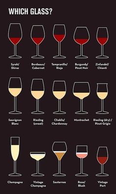 How To Sound Like A Wine Expert In 9 Basic Steps beginner's guide to wine Glasses Drink Bar, Bar Drinks, Beverages, Wine Drinks, Bartender Drinks, Vodka Cocktails, Drinks Alcohol, Party Knaller, Ideas Party