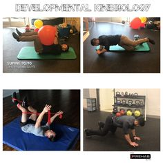 """This article will use a global approach to train muscles through purposeful movements. Some of you may know this as """"Dynamic Neuromuscular Stabilization."""