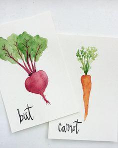 Beet Carrot Vegetable Original Watercolor Paintings 6 x Watercolor Fruit, Watercolor Journal, Fruit Painting, Easy Watercolor, Watercolor Cards, Watercolour Painting, Watercolor Artists, Painting Art, Beginning Watercolor
