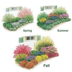 All season flower bed