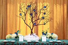 Manzanita Branches with Blue Orchids-my love of trees=perfect c: Manzanita Tree Centerpieces, Manzanita Branches, Centerpiece Decorations, Wedding Centerpieces, Wedding Table, Our Wedding, Wedding Decorations, Wedding Things, Wedding Bells