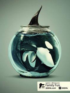 Dauphins, delphinariums, Marineland, SeaWorld, shows de dauphins, dauphins captifs, orques, soigneurs, shows de dauphins, spectacles d'orques, bélugas,